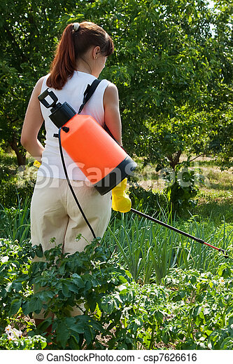 Woman spraying potato plant  - csp7626616