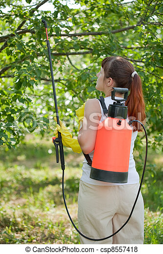 Woman spraying tree   - csp8557418