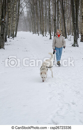 Woman with dog walking down the avenue in the winter. - csp26723336