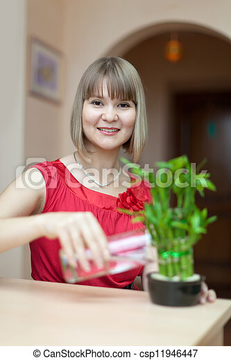 woman with lucky bamboo plant  - csp11946447