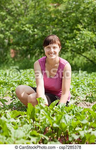 woman working in  vegetable garden - csp7285378