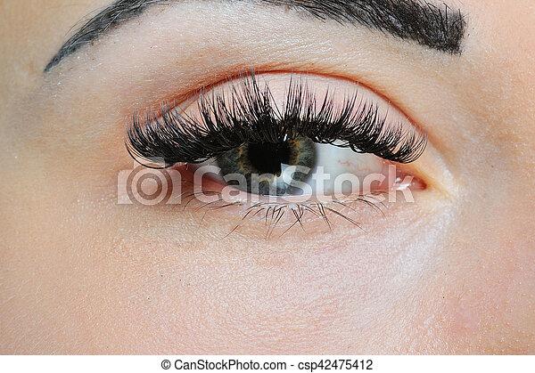 93cd5bd230b Beautiful woman's eyes and eyelashes. makeup close-up.