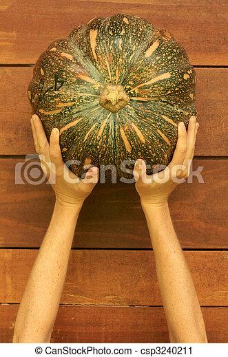 Woman's hands holding pumpkin - csp3240211