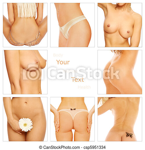 female body parts photo