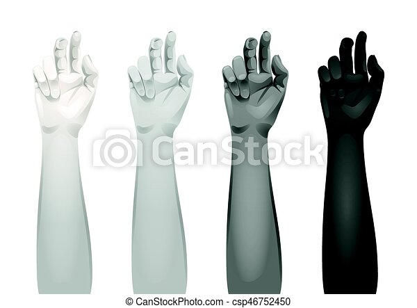 women arms templates realistic women arms with different hands