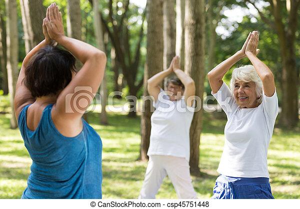 Women doing yoga in a park - csp45751448