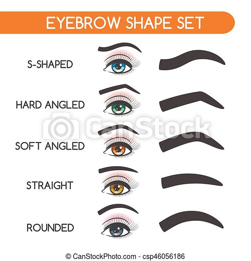 women eyebrows shapes set eyebrow shaping for woman face makeup