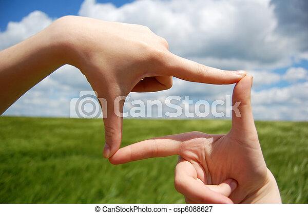 Women hands make frame over green wheat field.