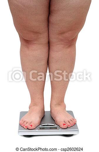 women legs with overweight - csp2602624