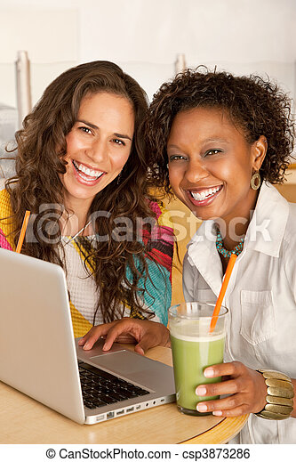 Women on a Laptop - csp3873286