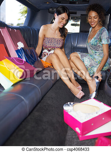 women shopping in limousine - csp4068433