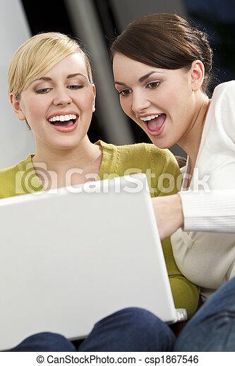 Women Using A Laptop Computer - csp1867546