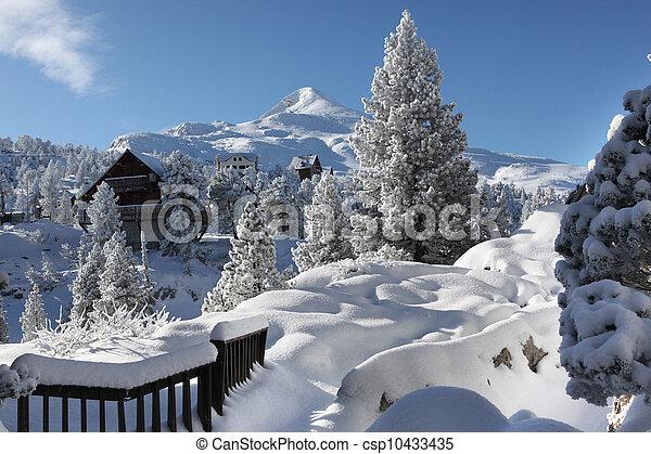 wonderland, inverno - csp10433435