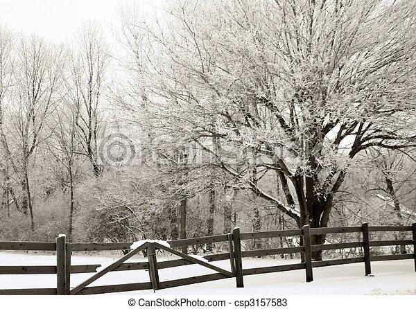 wonderland, inverno - csp3157583