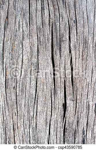 wood background - csp43590785