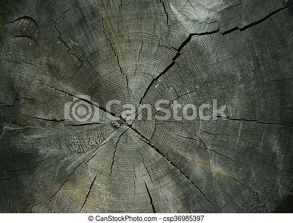 Wood background - csp36985397