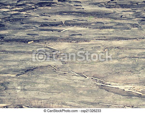 wood background - csp21326233