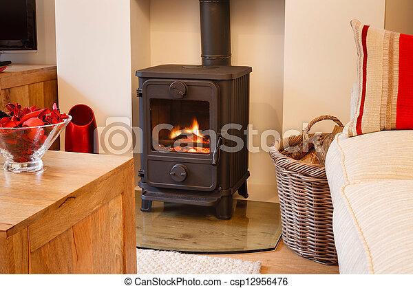 Wood burning stove - csp12956476