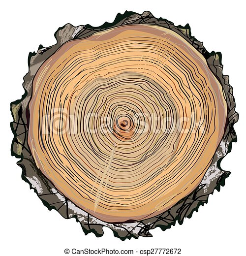 Wood cut round shape - hand drawn - csp27772672