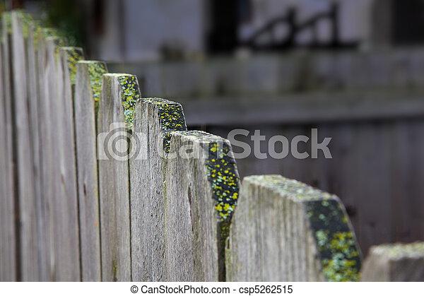Wood fence diagonal - csp5262515