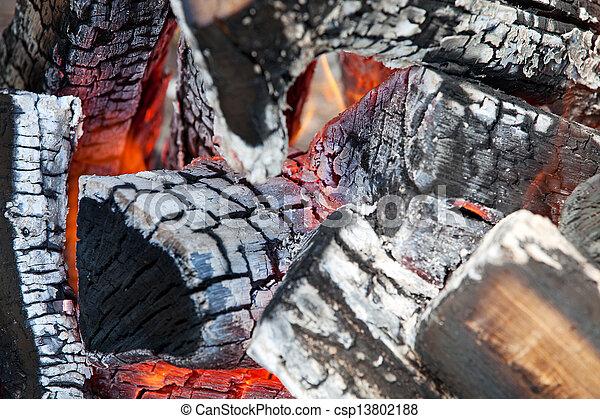 Wood fire  - csp13802188