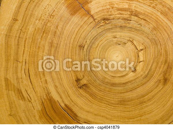 Wood grain background texture - csp4041879
