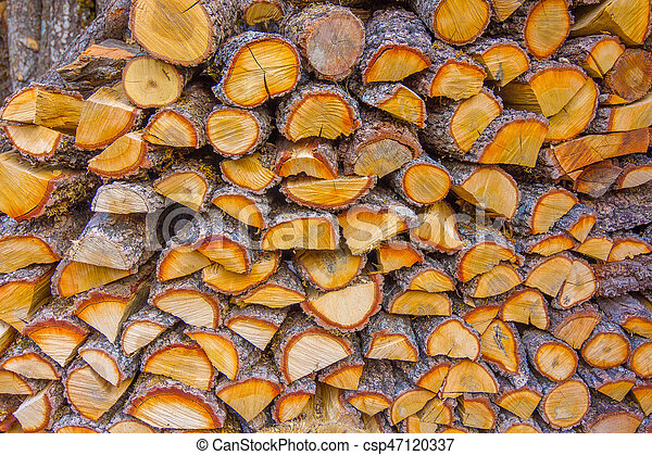 Wood log background - csp47120337