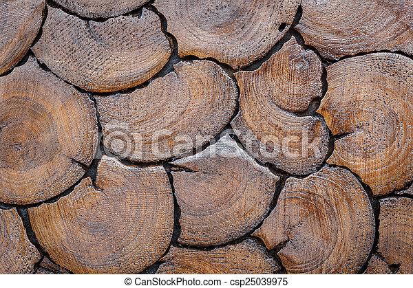 Wood log background texture - csp25039975
