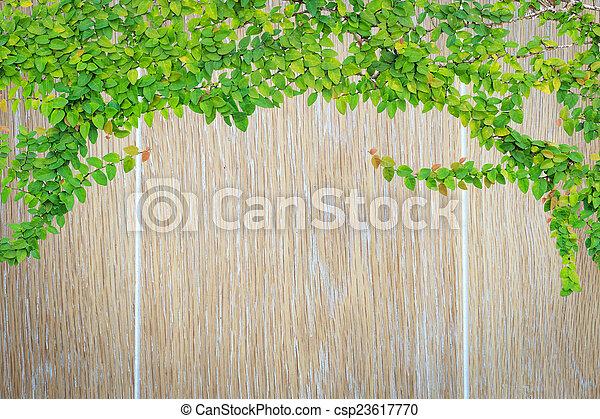 Wood texture background - csp23617770
