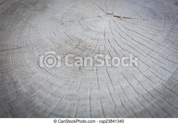 Wood texture background - csp23841340