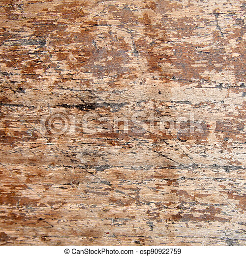 wood texture - csp90922759