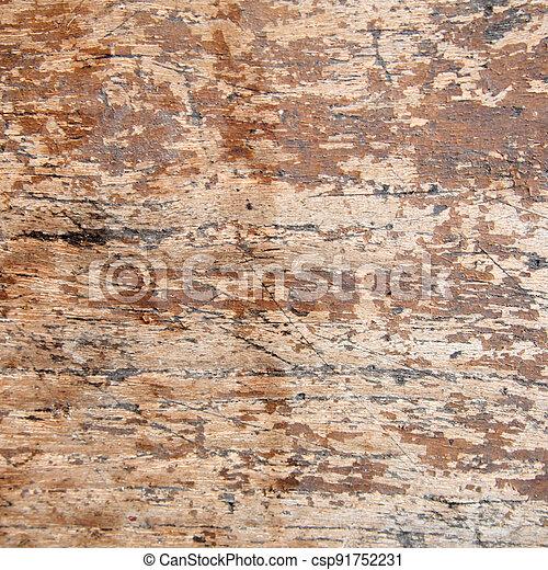 wood texture - csp91752231