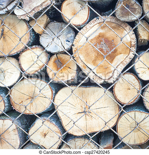 wood trunk behind fence - csp27420245