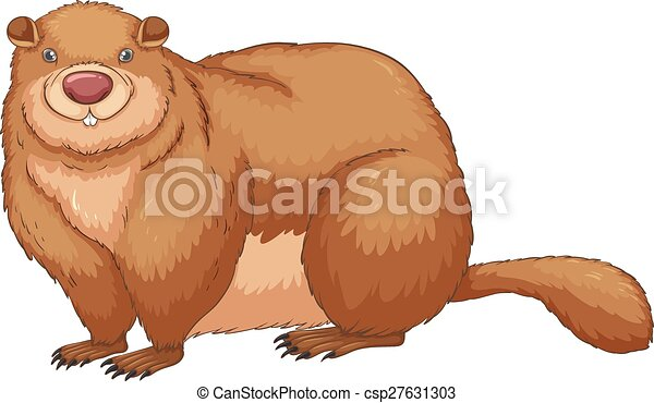 woodchuck illustration of a close up woodchuck rh canstockphoto com Groundhog Shadow Clip Art woodchuck clipart free
