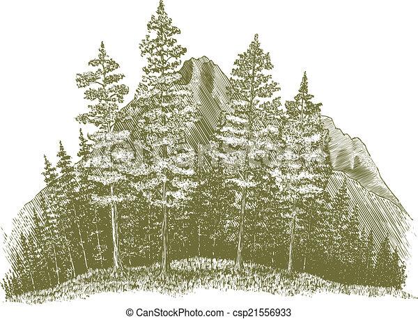 Woodcut Mountain Drawing - csp21556933