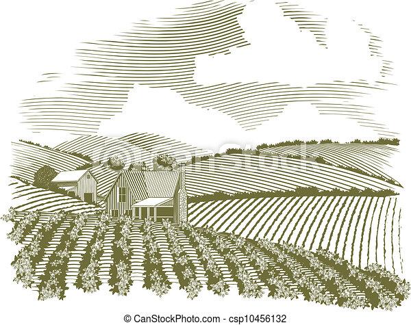 Woodcut Rural Farm House - csp10456132