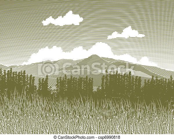 woodcut, selva - csp6990818