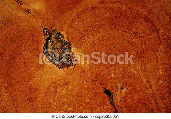 wooden background - csp25358851
