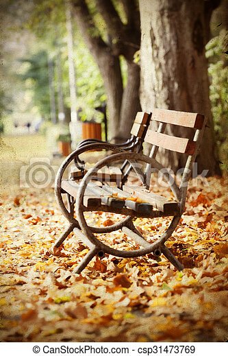Wooden bench in autumn park - csp31473769