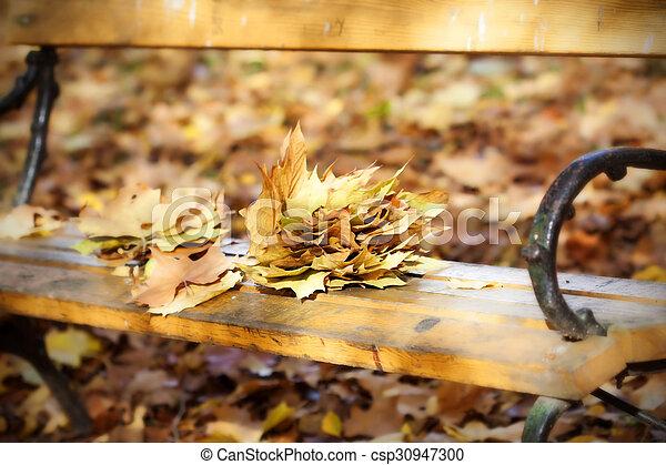Wooden bench in autumn park - csp30947300