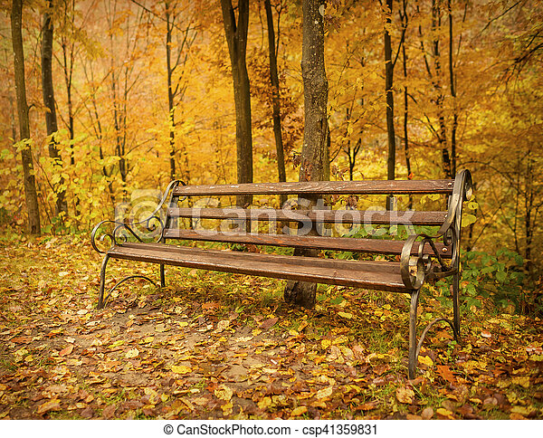 Wooden Bench In The Park At Autumn