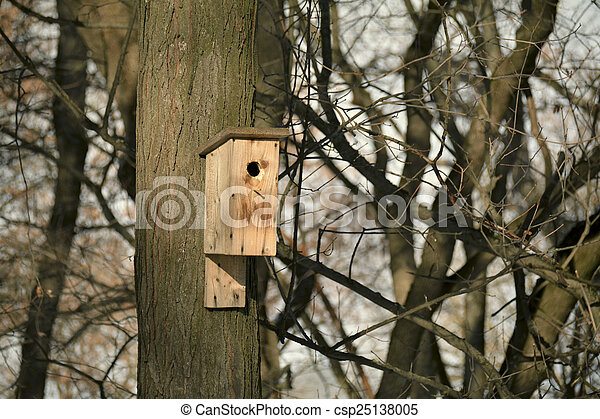 Wooden bird nesting house in early spring - csp25138005