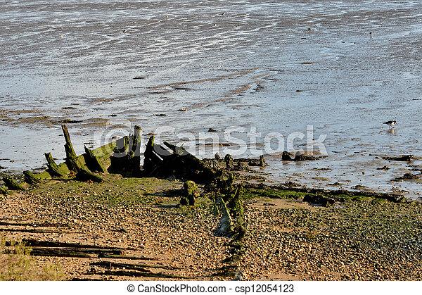 Wooden boat wreck in estuary - csp12054123