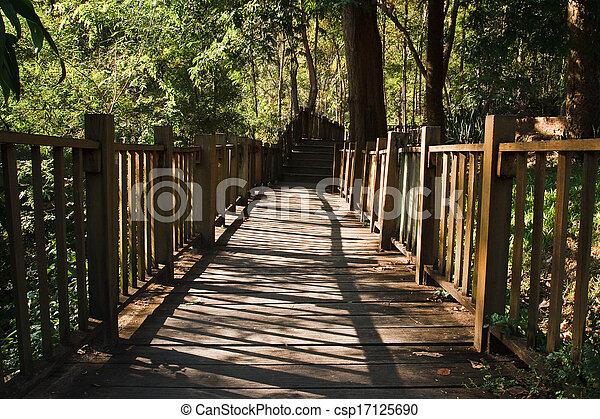 wooden bridge in Forest - csp17125690