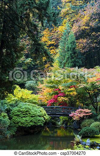 Wooden bridge, japanese garden, portland, oregon. Autumn in the ...