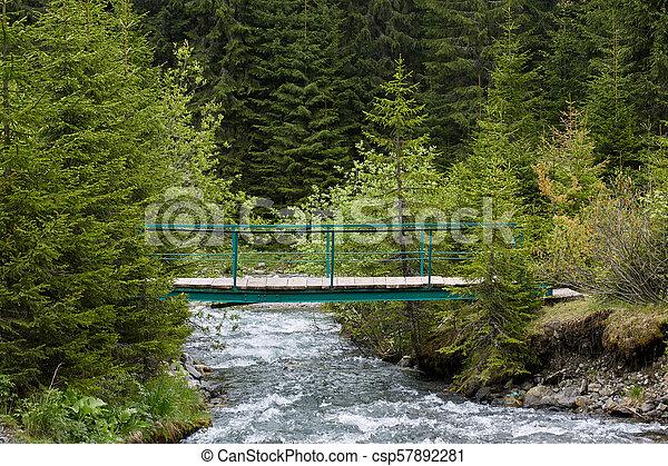 Wooden bridge over a creek - csp57892281