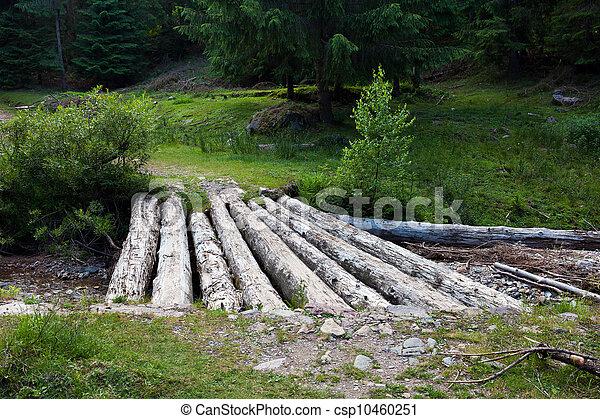 Wooden bridge over a creek - csp10460251