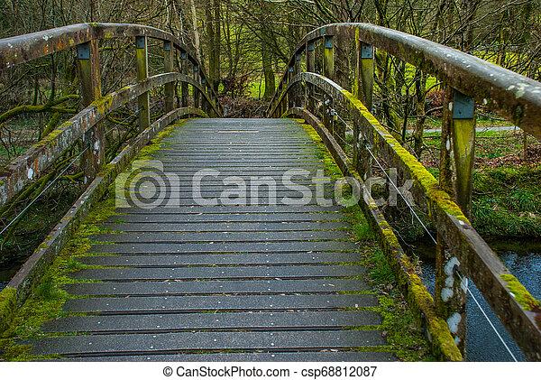 Wooden bridge over creek in Lake District. - csp68812087