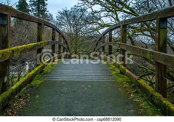 Wooden bridge over creek in Lake District. - csp68812090
