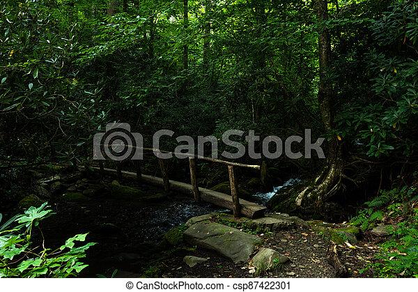 Wooden Bridge Over Creek - csp87422301